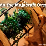 The Majacraft Overdrive Revolution Begins